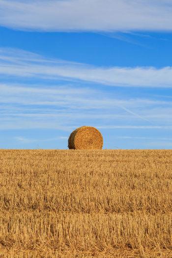 A Hay Bale on the Horizon Agriculture Bale  Beauty In Nature Blue Day Field Hay Hay Bale Landscape Nature No People Outdoors Rural Scene Scenics Sky Tranquil Scene Tranquility