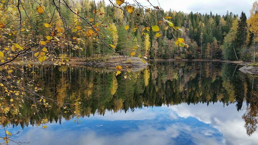 A lake somewhere in Norway. Lake View Water Reflections Bluesky Autumn Colors Norway Portugueseinnorway