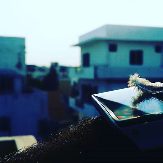 Feather touch.. 😆😊 Nature Note3 Smartwatch SamsungGear Samsung Reflection Shadow Symmetry Muchwow Wristwatch Time Sunny Sunset Frazertown Bengaluru Karnataka India Instamood Instalike Instacool Instadaily Technology Pleasant Detail Urban industriallook outofhashtags