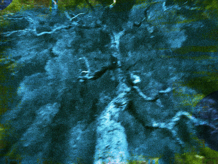Abstract Backgrounds Blue Close-up Day Multi Colored No People Pattern Textured  Tree Abstractions Tree Art Tree Creation UnderSea Underwater