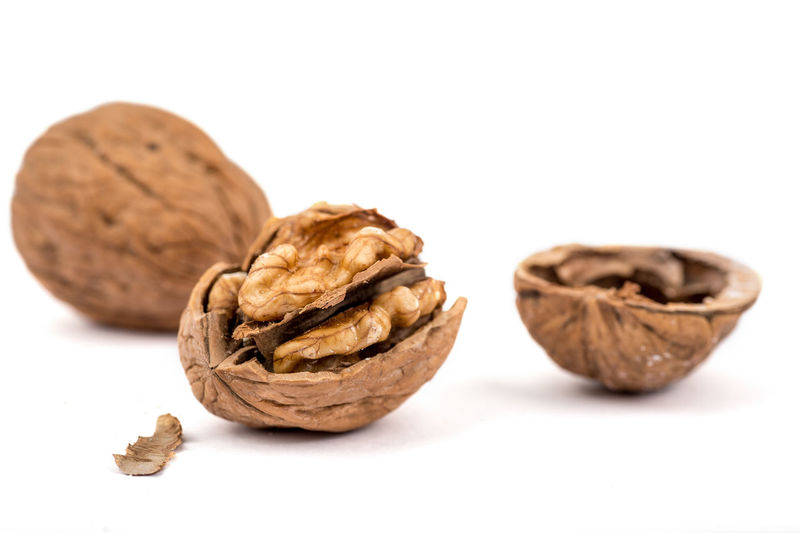 Walnuts - the superfood nut. Brown Christmas Close-up Cracked Cracked Paint Dried Fruit Food Food And Drink Freshness Hazelnut Healthy Eating Healthy Food Ingredient No People Nut - Food Nut Shell Nuts Nutshell Peanut - Food Still Life Studio Shot Superfood Superfoodsuperboost Walnut White Background