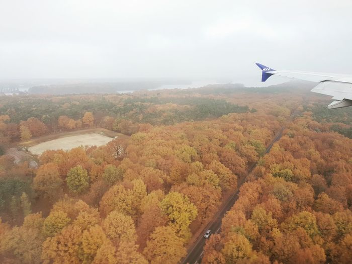 Flying Airplane Tree Bird Air Vehicle Rural Scene Mid-air Autumn Agriculture Aerial View