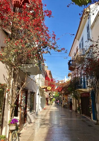 Exceptional Photographs City Nafplion Greece Architecture Building Exterior The Way Forward Built Structure Alley Day Town Outdoors No People Tree Nature City Street Streetphotography Scenics