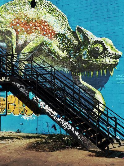Bold and bright. Animal Representation Learning Lifeisbeautiful EyeEm New Here Eyemdaily LearningPhotography Downtown District HTX Art Houston Texas Iguana Graffiti City Life Multi Colored