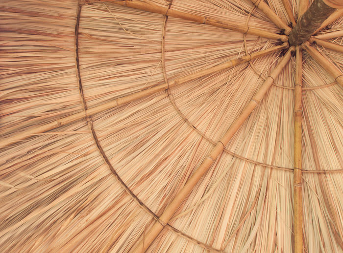 Full frame shot of dry leaf