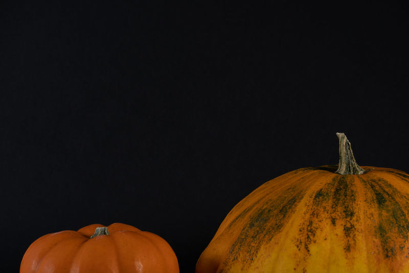 Close-up of pumpkins against black background