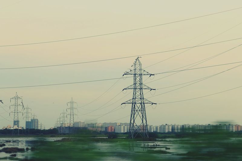Q Quick Shot Quick Shot Before Sundown Electric Grid Power Lines Power Transmission Line Swampy  Land Cables Architecture Power Supply Power Cable Nature Green Grass Greenland EyeEm Nature Lover EyeEm Gallery EyeEm Swans On The Lake Swans Of Eyeem Swan Sitting on Power Line  Household Buildings
