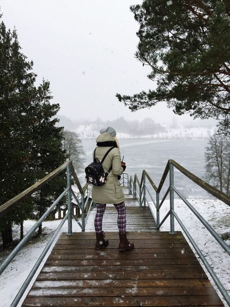 Winter Full Length Real People One Person Lifestyles Leisure Activity Steps Winter Tree Day Cold Temperature Nature