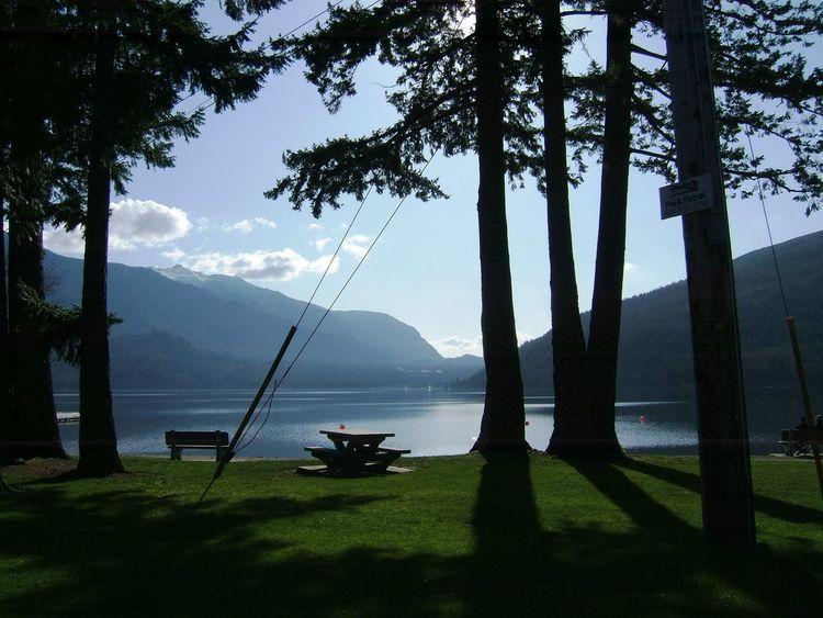 Chilliwackbc Bc-britsh Columbia Cultuslake Trees Water Bench Mountains