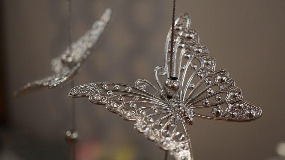 Россия праздник Санкт-Петербург красота Saint Petersburg Happynewyear2016 новыйгод Winter гирлянда