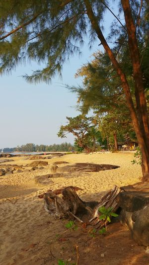Holiday EyeEm Thailand Fernweh Impressive View Seaside_collection Treetastic Khaolak Beach Photography Stones & Water Edge Of The World