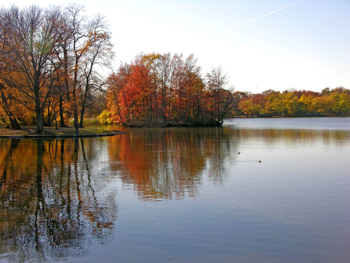 Capture The Moment Autumn Fall Lake Leaves Water Brooklyn Prospect Park Reflection Trees