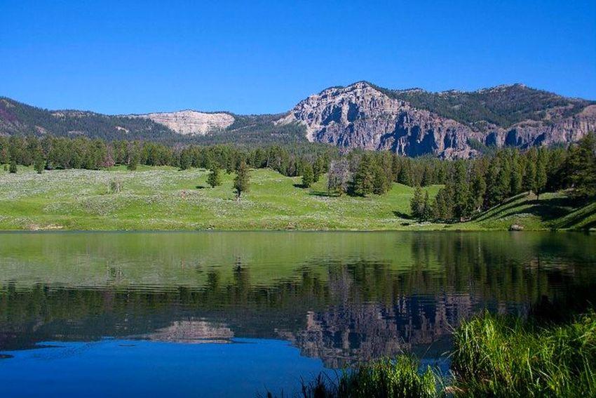 Trout Lake Yellowstone National Park