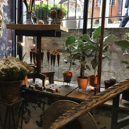 Potted plants on table at restaurant