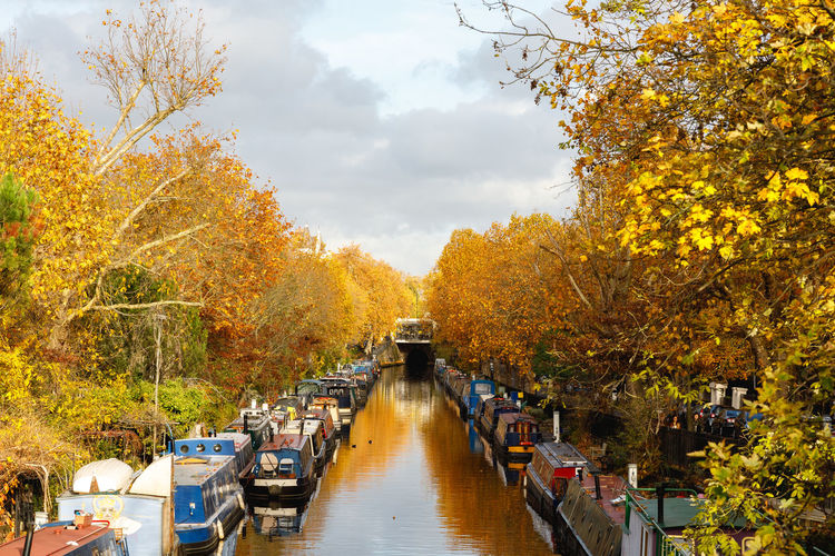Autumn in London Autumn Plant Tree Change Nature Water Day Orange Color Transportation Growth Beauty In Nature No People Sky Mode Of Transportation Yellow The Way Forward Cloud - Sky Scenics - Nature Outdoors Diminishing Perspective Canal Autumn Collection London Autumn Mode Of Transport Autumn Mood British Culture