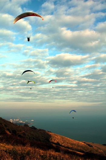 Para Gliders over Eastbourne Adventure Animal Themes Beauty In Nature Bird Cloud - Sky Day Extreme Sports Flying Hot Air Balloon Leisure Activity Lifestyles Nature No People Outdoors Para Gliders Parachute Paragliding Sea Sky Sunset Water