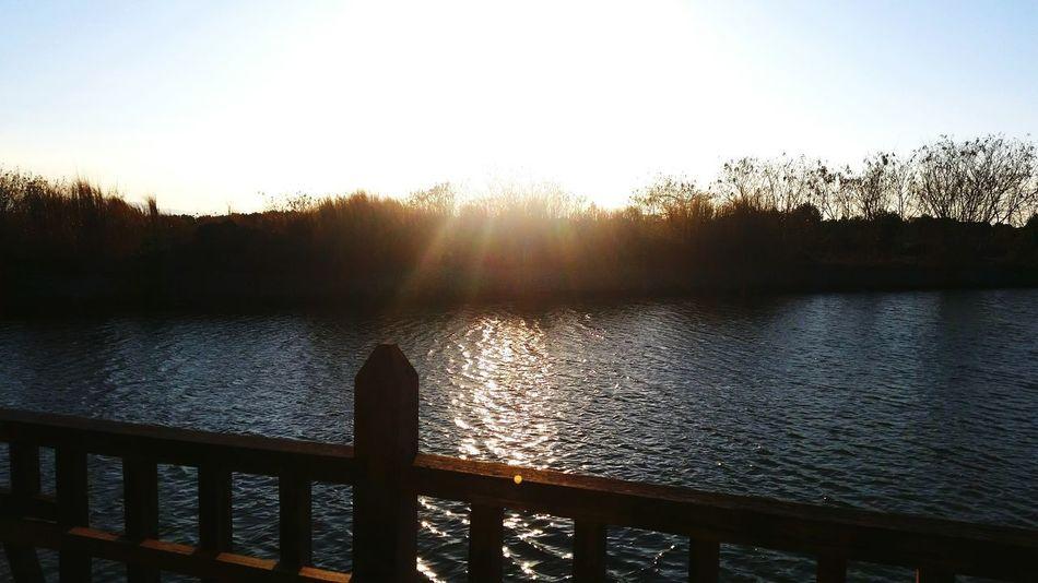 nice mornings Sunrise Peacefulview SomethingFresh EyeEmNewHere