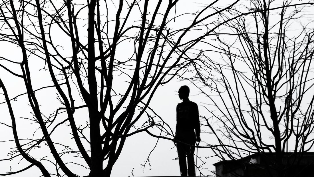 Streetphotography One Person EyeEm Urban Street Photography Istanbul Bw Bnw Bnw_collection Blackandwhite Tree Branch Bare Tree Winter Perching Silhouette