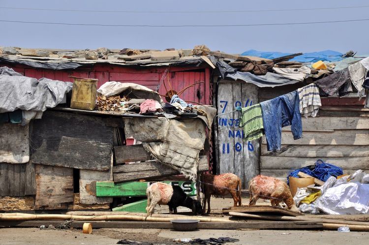 Africa Built Structure Clothesline Clothing Environmental Issues Environmental Pollution Hut Huts Laundry Outdoors Pollution Poor People  Poverty Sheep Slum Slums Waste Waste Disposal Shack Shanty Dwelling Developing Country West Africa Poor People  Beach