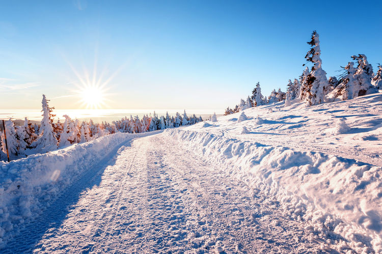 Cold Temperature Snow Winter Sky Beauty In Nature Sunlight Tranquil Scene White Color Environment Covering Scenics - Nature Nature Tree Tranquility Landscape Sun Non-urban Scene Plant Land No People Lens Flare Extreme Weather Bright Snowcapped Mountain Powder Snow