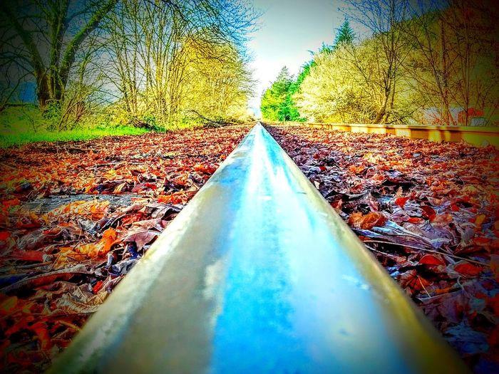 on the tracks Tracks Train Tracks