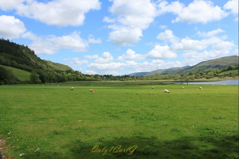 Clouds Beautiful Landscape Blue Sky Sheep Ireland TheMinimals (less Edit Juxt Photography) County Sligo Glencar Waterfall