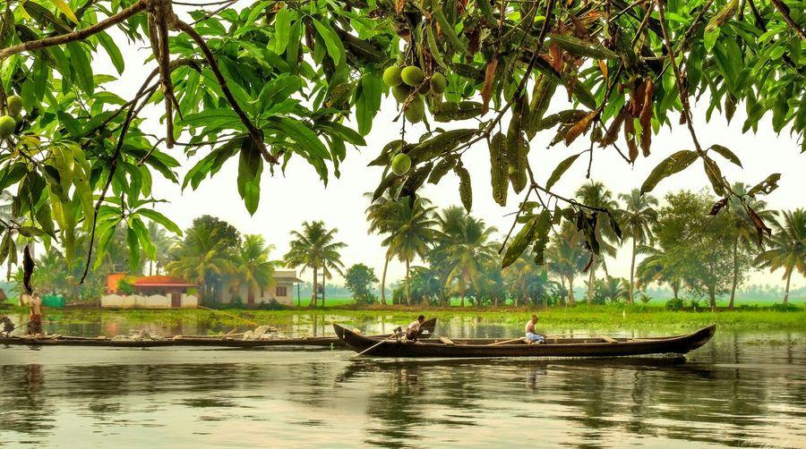 Mango Kerala India Boats Fishing Landscape Scenery Nikon Trees River