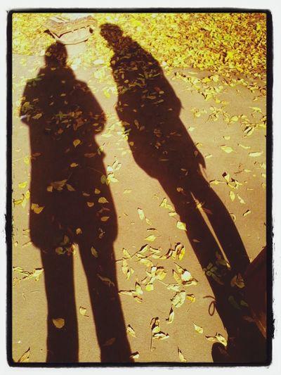 Autumn Fall Couple Autumn Leaves #shadow #ivanovo