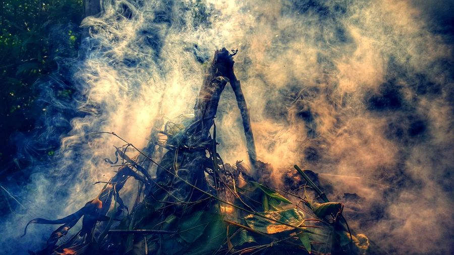 Firewood Fire Landscape Mobile_photographer Burnt Woods Wood EyeEm Nature Lover Hello World Check This Out Taking Photos Eye4photography