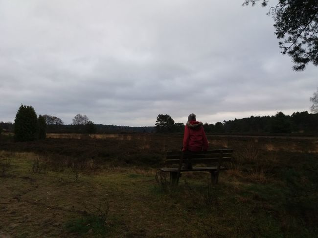 a wander day in the Lüneburger Heide An Eye For Travel Sitting One Person Full Length Adults Only One Woman Only Nature Sky Outdoors Landscape