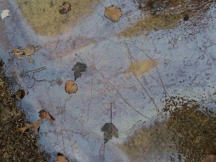 Beauty Sidewalk Fall Chemical EyeEmpics