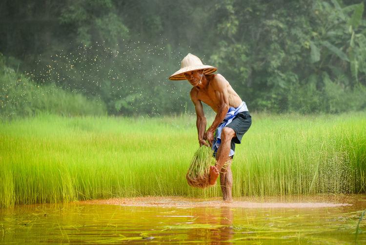 Shirtless man farming in water on field