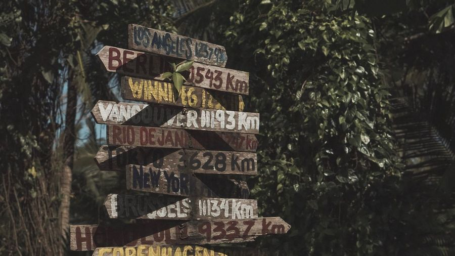 Close-up of signboard against trees