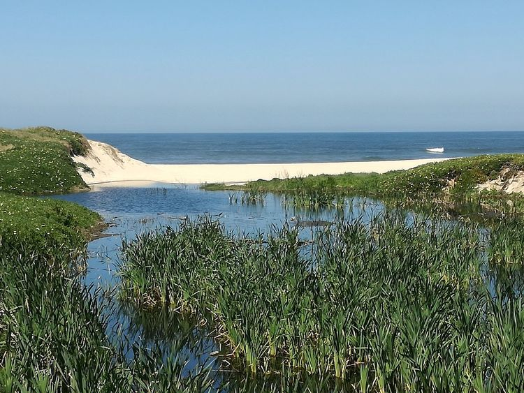 Sea Beach Water Horizon Over Water Scenics Vacations Nature Idyllic Beauty In Nature Outdoors Tranquil Scene Clear Sky Tranquility Travel Destinations Day Sky Sand No People Landscape_photography Beauty In Nature Landscape Portugal Is Beautiful Portugal_em_fotos Caminho Do Mar