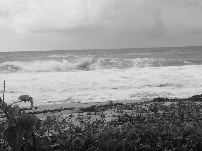 Monochrome Photography Sea Horizon Over Water Water Nature Sky Beach Beauty In Nature Lifestyles Outdoors Scenics Wave Men One Person