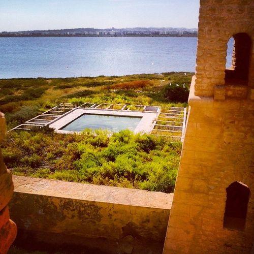 Tbaskila en plein lac de Tunis, L'ilot de Chikly