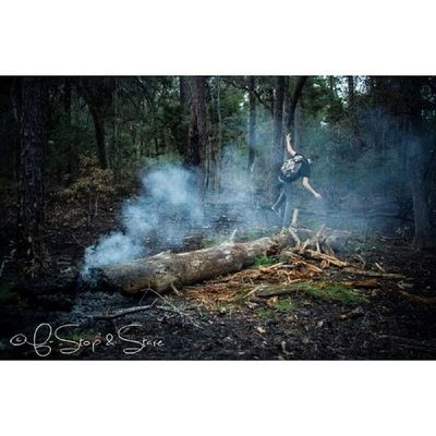 The explorer. @bassmaloney Photography Photooftheday Art Fstopandstare forest fire smoke trees travel freedom exploring igdaily instagood manateesprings camping hike nature outdoors
