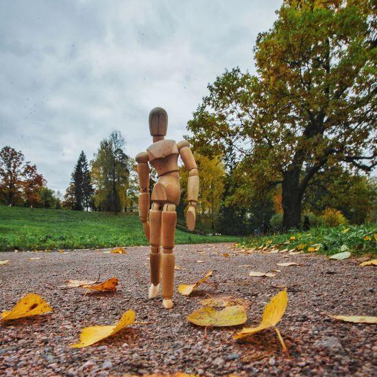 Autumn memories Full Length Tree Creativity Figurine  Autumn Leaves Woodyforest Human Representation Walk