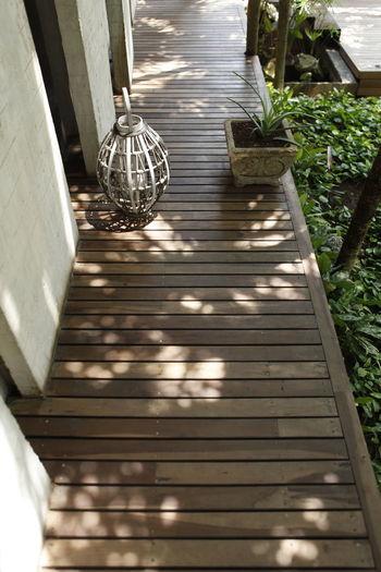 Path Nature No People Outdoors Sunlight Zen