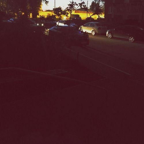 No People Shadow Outdoors Night Tree