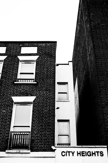 Which is Higher? Fujifilm_xseries Streetphotography London Architecture Built Structure Building Exterior Building Window Low Angle View Sky Clear Sky Day No People Residential District City Staircase Text Outdoors Nature Wall Western Script Brick Wall House Office Building Exterior Skyscraper
