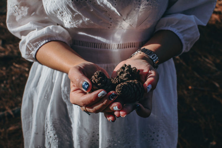 Close-up midsection of woman holding pine cones in forest
