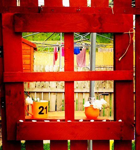 Garden Window Kas© Muddakas Messedupjournal Recycle Fence Sociable Neighbour Washingline
