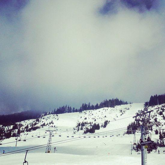 Skiing again...