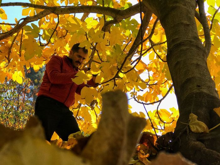 Low angle view of man standing by tree during autumn