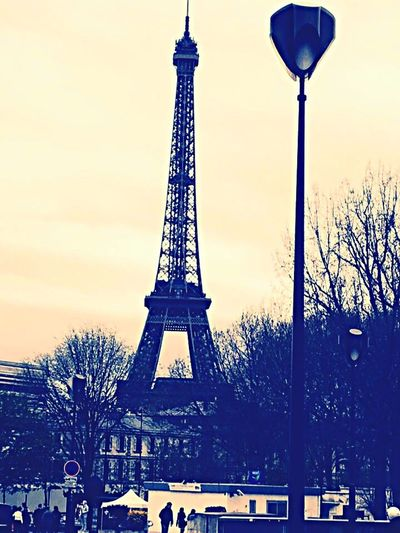 Architecture Tower Built Structure Travel Destinations Tree Sky Travel Outdoors Tourism No People Monument Low Angle View Day Building Exterior City Effiel Tower Paris, France