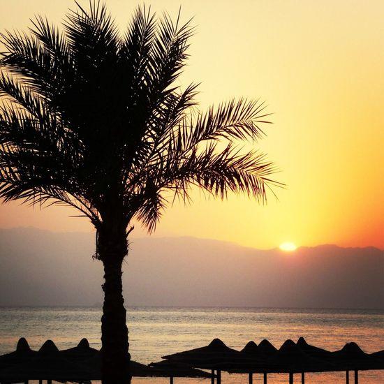 vacances posey Soleil#piscine☀ La Plage
