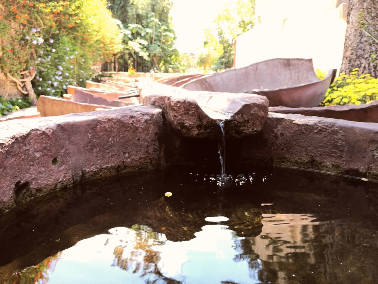 water, day, tree, outdoors, drinking fountain, no people, sunlight, nature, close-up, architecture, dripping