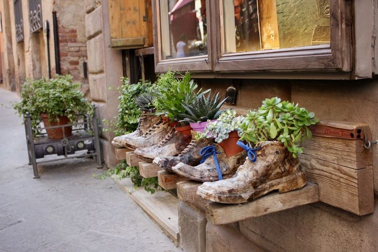 Architecture Building Exterior Craftsmanship  Day Flower Italy Italy❤️ Italy🇮🇹 Montepuliciano Nature No People Outdoors Plant Schoes Shoeaddict Shoeart Shoes Shoes <3 Shoes Of The Day Shopfront Tuscany ıtaly