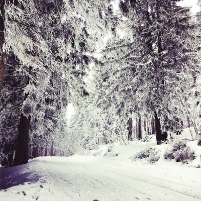 Winter Check This Out IPhoneography IPhone Tsjechië Winter Landscape Landscape Landscape #Nature #photography Nature Photo Photography Photooftheday